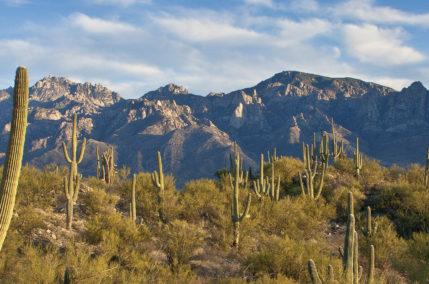 Arizona et Nouveau Mexique
