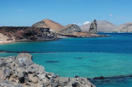 Les Galápagos en tribu